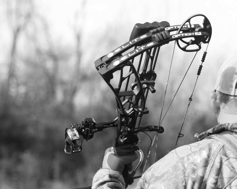 Option 7 Elite Archery Europe